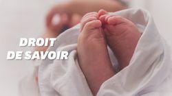Pourquoi l'accès aux origines des enfants nés de PMA concerne aussi les