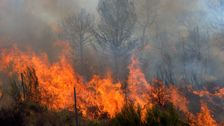 Ich Ignorierte Die Dringlichkeit, Gegen Den Klimawandel. Dann Mein Haus Auf Feuer Gefangen.