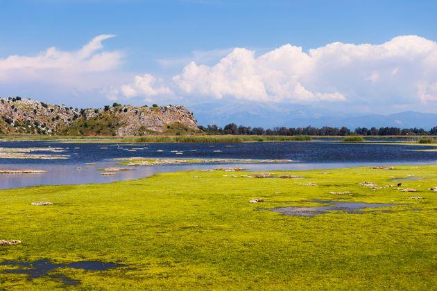 Προστατευόμενη περιοχλή Natura - Λίμνη Προκόπου