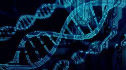 Pourquoi il a fallu attendre le test ADN pour savoir que Ligonnès n'était pas l'homme de