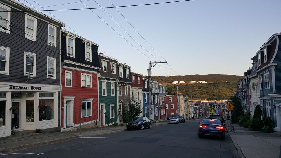 A residential area of St. John's looking down towards the