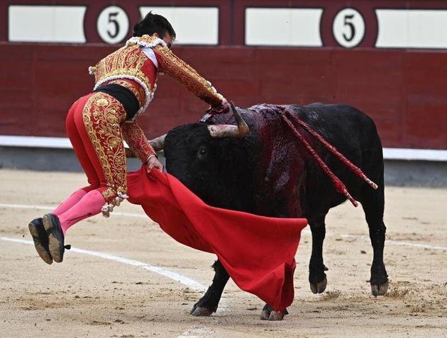 El diestro Gonzalo Caballero ayer en el momento de sufrir una cogida en el tradicional festejo del Día...