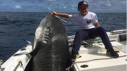 Είναι 8 χρονών, ζυγίζει 40 κιλά και έπιασε καρχαρία τίγρη 314