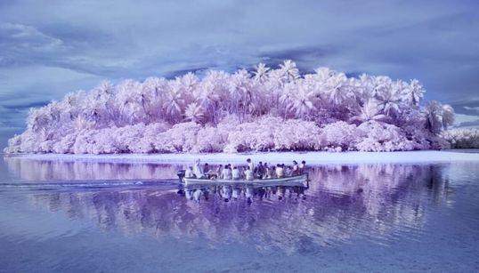 Το νησί της αχρωματοψίας: Εκεί που η ζούγκλα είναι ροζ και ο ωκεανός