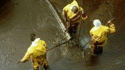 Environment Canada To Probe Cold Lake Bitumen