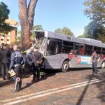 Autobus si schianta contro un albero a Roma: 29