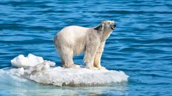 얼음 바다를 둘러싼 21세기의 냉전