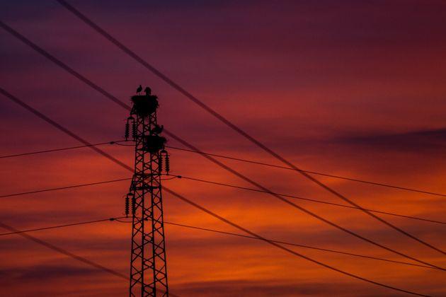 La BAD accorde 138 millions d'euros à la STEG pour le réseau d'électricité et les énergies