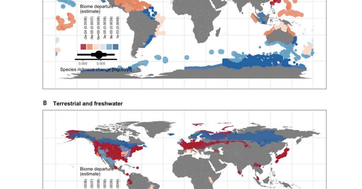 Ces cartes montrent comment l'homme a bouleversé la biodiversité