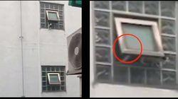 5층 건물에서 고양이를 떨어뜨린 '손'을 찾고