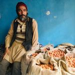 Kashmir: Kargil's Apricot Farmers Are Staring At A 'Total Loss' After Article