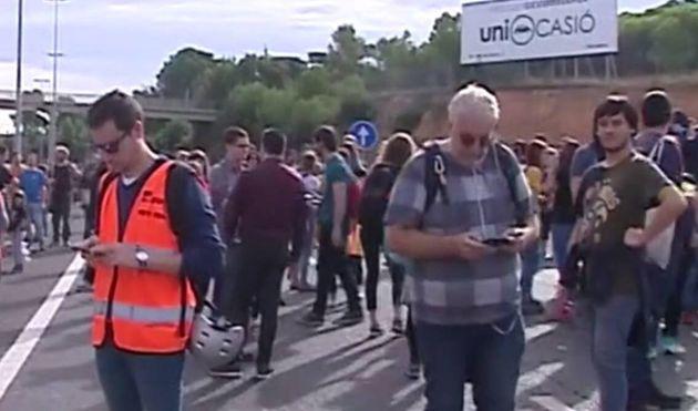 Manifestantes cortan al