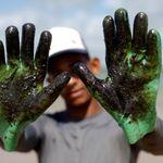 'O que a gente está vivendo no litoral do Nordeste é algo assustador', diz professor da