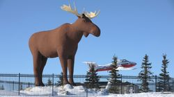 Quebec Town Wants To Build A Massive Moose
