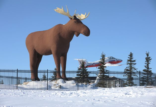 Mac the Moose, pictured in Moose Jaw, Sask., on Tuesday, Feb. 25, 2019, is competing with another moose...