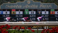 Άλογο αριθμός των νεκρών Στο California Santa Anita Park Φτάνει το 34