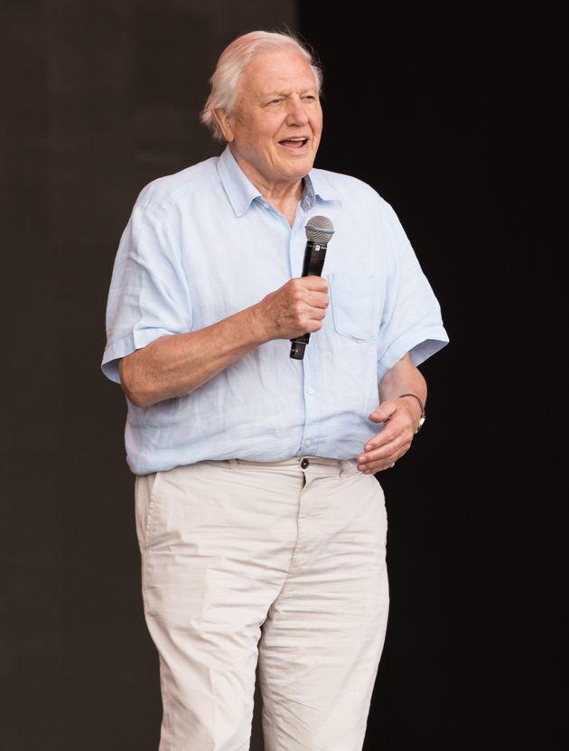 Sir David Attenborough at Glastonbury over the