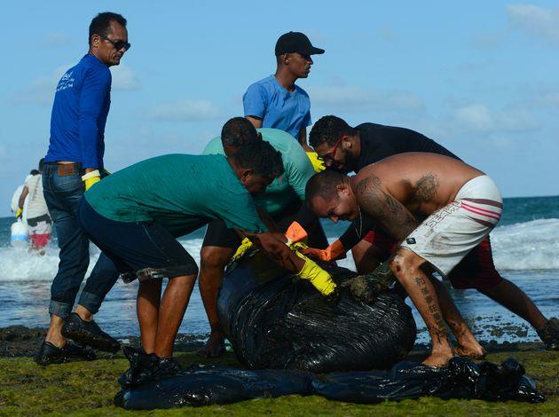 Voluntários removem mancha de óleo da praia de Tamandaré, em