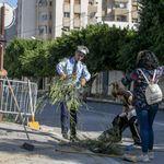 Photos: Les Tunisiens nettoient et embellissent leurs