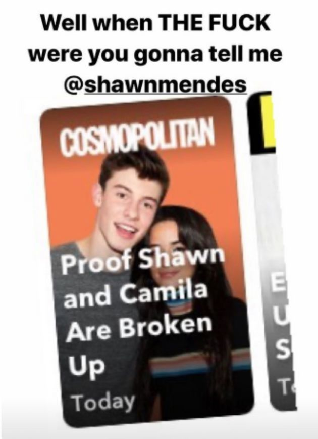 Camila Cabello Rips Shawn Mendes Breakup Rumors In Most NSFW