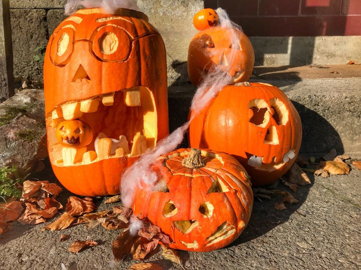 People often throw out their carved out pumpkins after Halloween, but you can also cut them up and compost them.