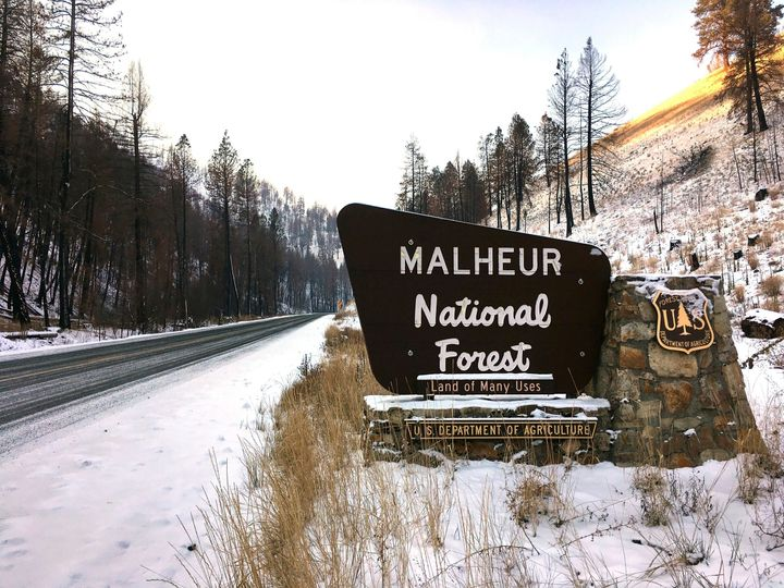 This Dec. 7, 2016 photo, shows the entrance to the Malheur National Forest near John Day, Ore.