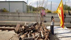 Un tren choca contra un árbol cortado intencionadamente sin dejar heridos entre Les Franqueses y La Garriga