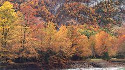 Los mejores parques naturales de España para visitar este