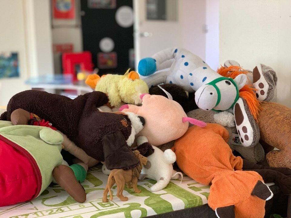 크리스탈렌 유치원은 '여자 장난감', '남자 장난감'에서 벗어나 모두 함께 놀 수 있도록 겉보기에 성별 구분이 쉽지 않은 동물 인형을 많이 구비해
