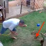 Watch This Guy Accidentally Blow Up His Entire Yard While Trying To Kill Some