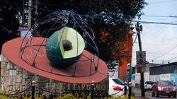 Αβοκάντο: Το «πράσινο χρυσάφι» στόχος των καρτέλ των