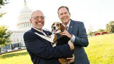 Το Σπίτι Ομόφωνα Περνά Δικομματική Νομοσχέδιο Που Απαγορεύει Την Εκ Προθέσεως Βλάβη Σε Ζώα