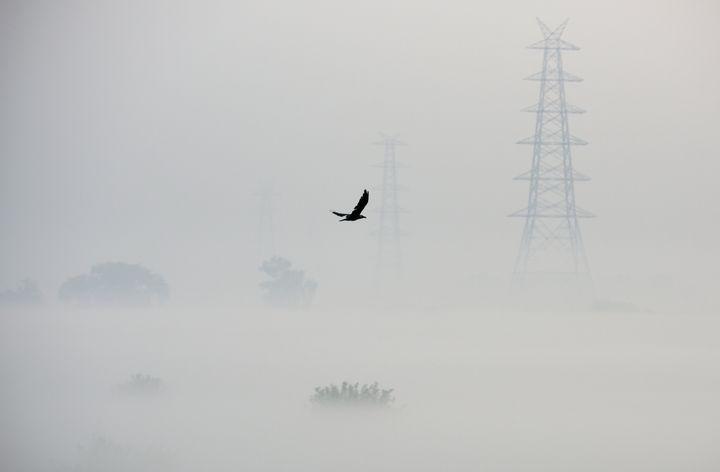 A photograph in Delhi's Mayur Vihar, on October 24 2019 — three days before Diwali.