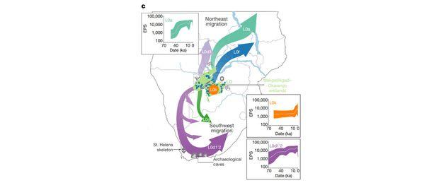 Le point d'origine commun d'Homo sapiens et les différentes vagues migratoires qui ont eu lieu depuis...