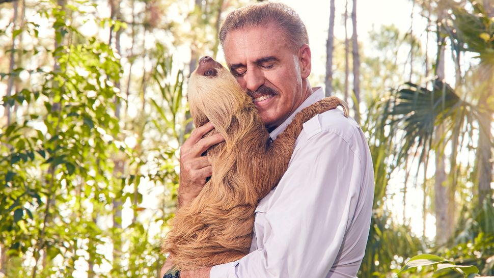 Ron Magill of Zoo Miami cuddles with a Hoffmann's two-toed sloth named Chelsea.