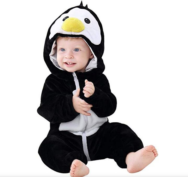 This penguin demands to be cuddled.