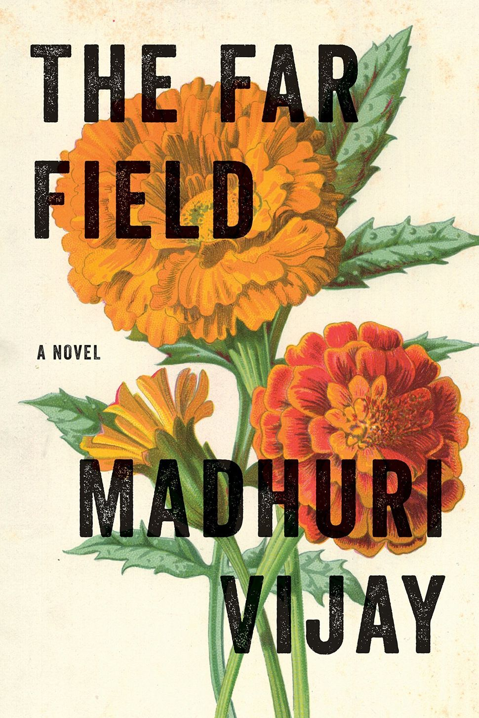 Madhuri Vijay's debut novel The Far Field