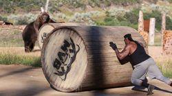 Des ours et des hommes se mesurent les uns aux autres pour une émission