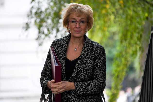 Energy secretary Andrea Leadsom said the government had
