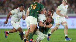 Contre l'Angleterre, la défense acharnée des Springboks impressionne les