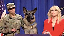 'SNL' Syria Hero Dog Apologises For Humping Legs Without