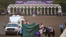 Renommierten Breeders' Cup Überschattet Von Einem Weiteren Pferd Tod In Santa Anita