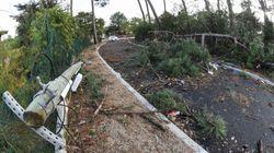 Six blessés légers et une personne recherchée après le passage de la tempête
