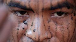 아마존 벌목꾼, 숲을 지키던 원주민