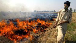 'Stop Blaming Farmers': MS Swaminathan To Delhi, Punjab Govts On Crop