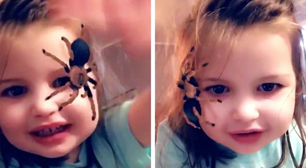 Is The Spider On Face Snapchat Filter Harmless Or Traumatic? We Asked A Psychologist