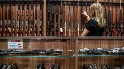 Câmara amplia acesso a armas para caçadores, atiradores e