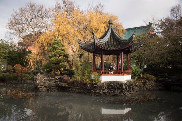 A man looks at the water at the Dr. Sun Yat-Sen Classical Chinese Garden, which was reopened after being...