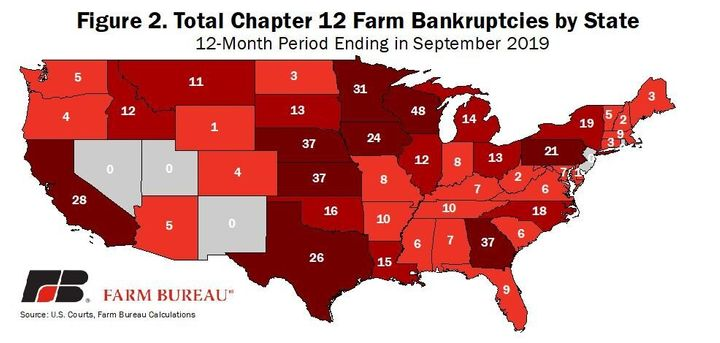 Chapter 12 farm bankruptcies in 2019.