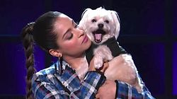 Lilly Singh Has Her Dog As A Guest And He Steals The
